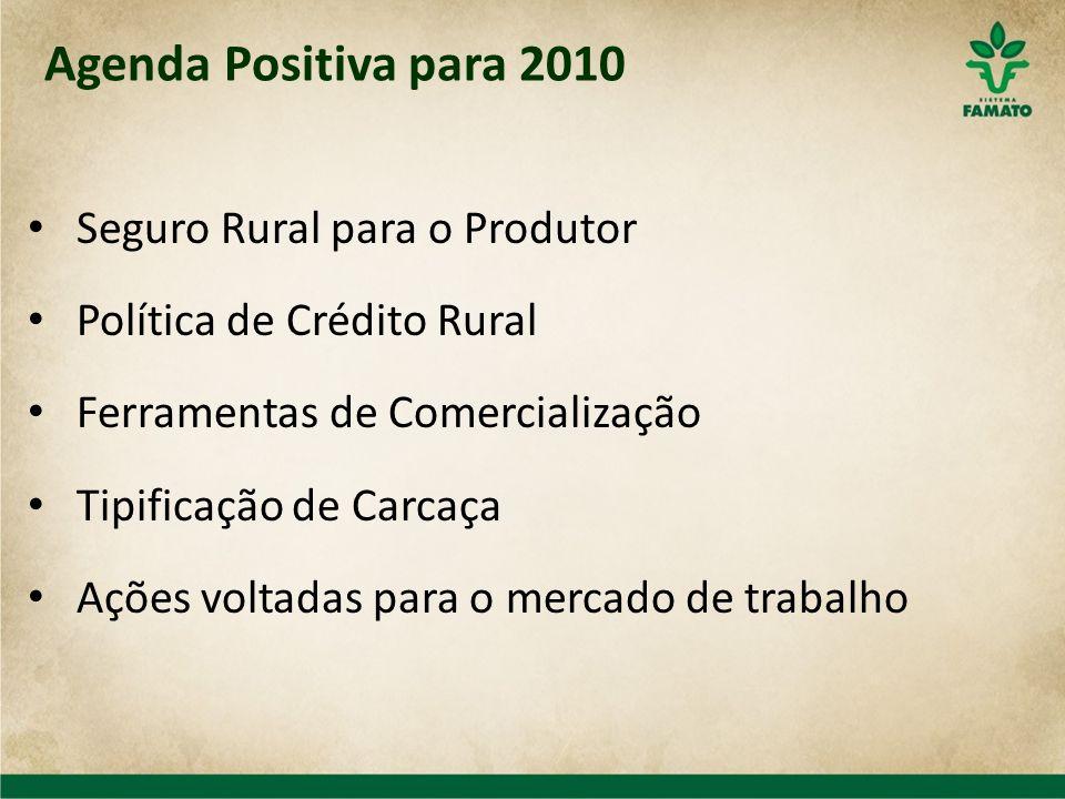 Agenda Positiva para 2010 Seguro Rural para o Produtor