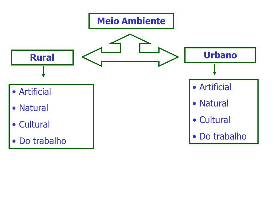 Meio Ambiente Urbano. Rural. Artificial. Natural. Cultural. Do trabalho. Artificial. Natural.