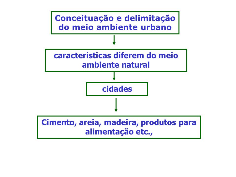 Conceituação e delimitação do meio ambiente urbano