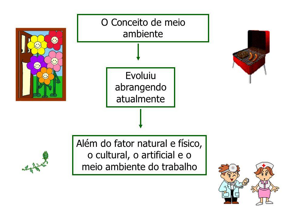 O Conceito de meio ambiente