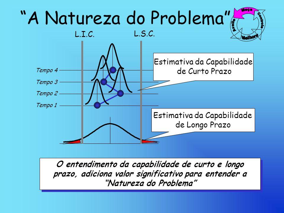 A Natureza do Problema