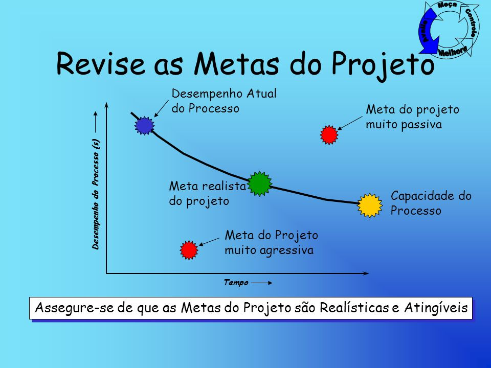 Revise as Metas do Projeto