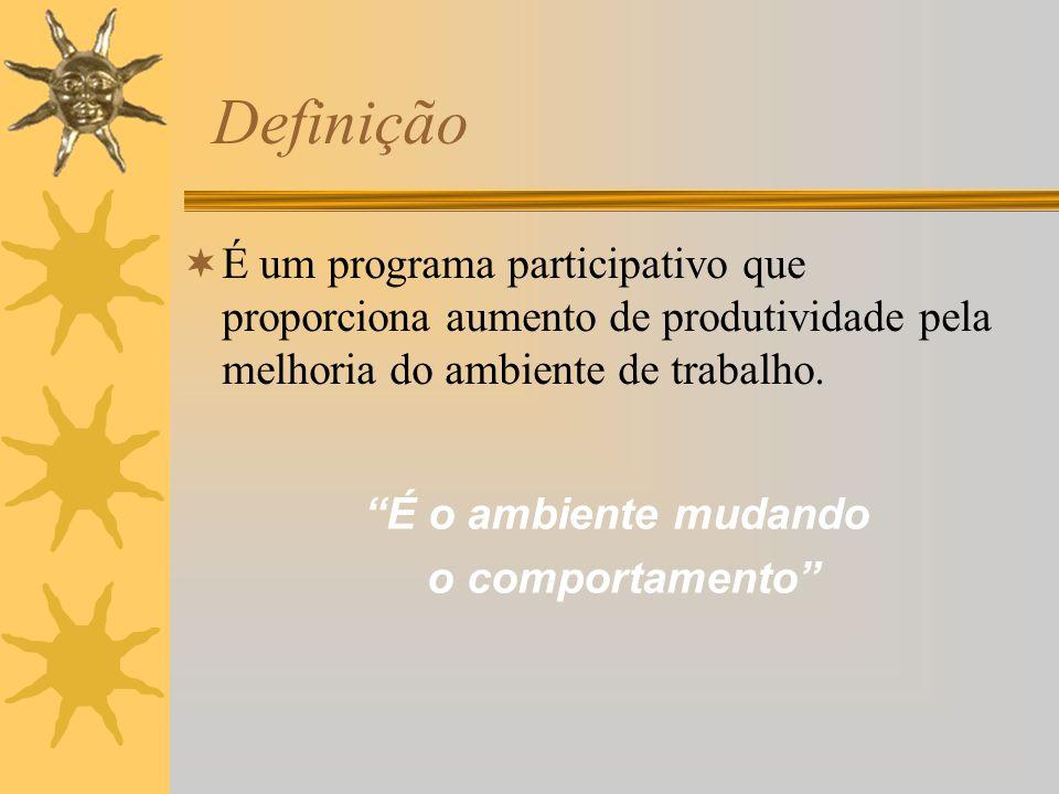 Definição É um programa participativo que proporciona aumento de produtividade pela melhoria do ambiente de trabalho.