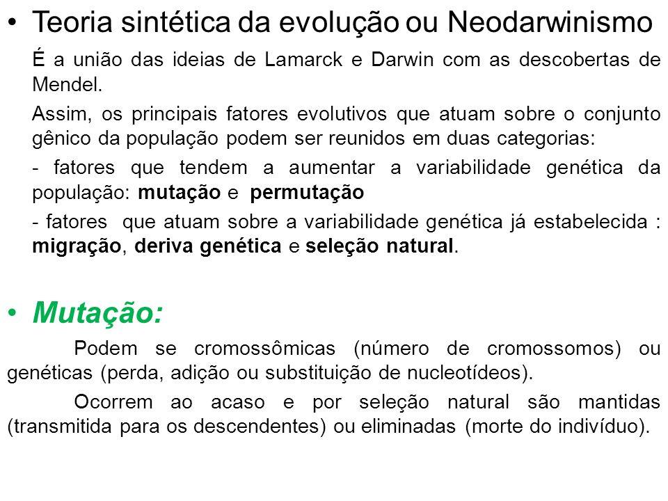 Teoria sintética da evolução ou Neodarwinismo