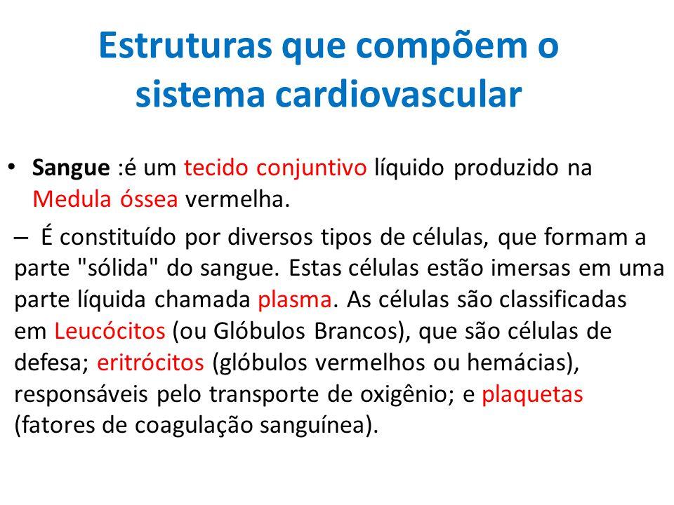 Estruturas que compõem o sistema cardiovascular