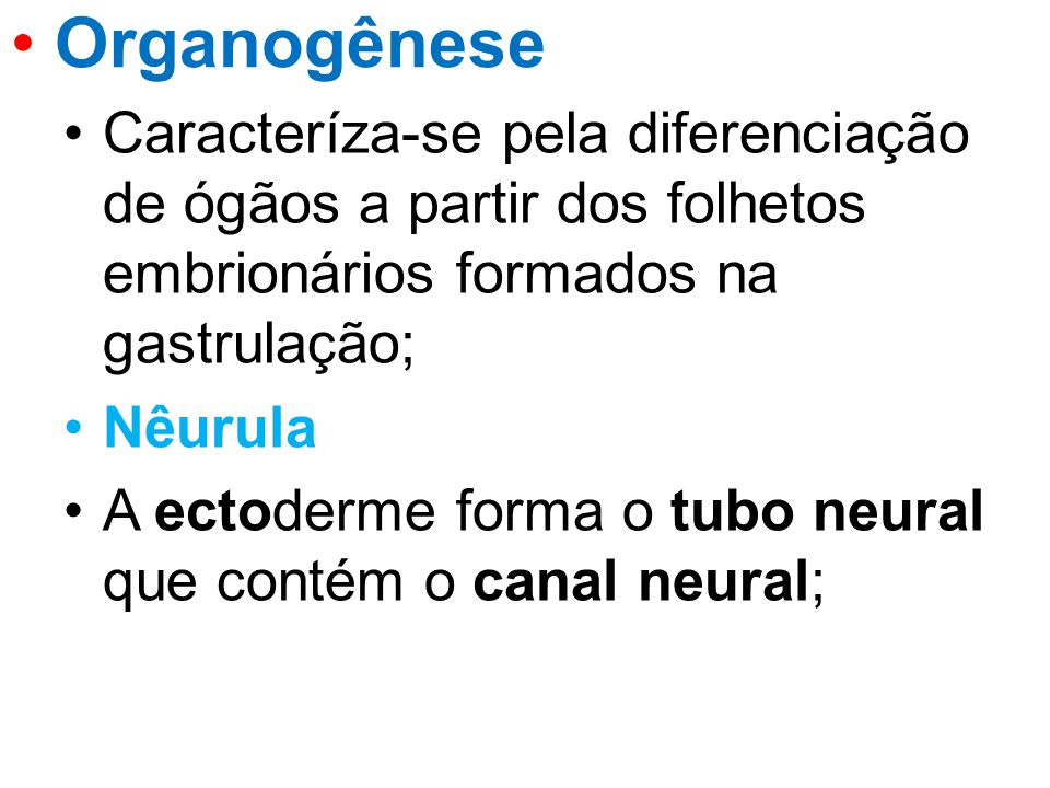 Organogênese Caracteríza-se pela diferenciação de ógãos a partir dos folhetos embrionários formados na gastrulação;