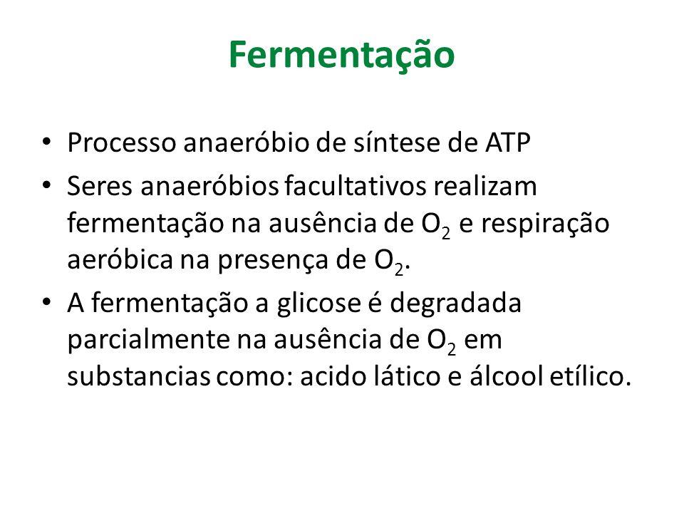 Fermentação Processo anaeróbio de síntese de ATP