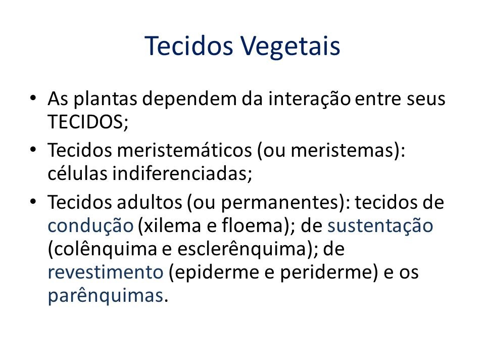Tecidos Vegetais As plantas dependem da interação entre seus TECIDOS;