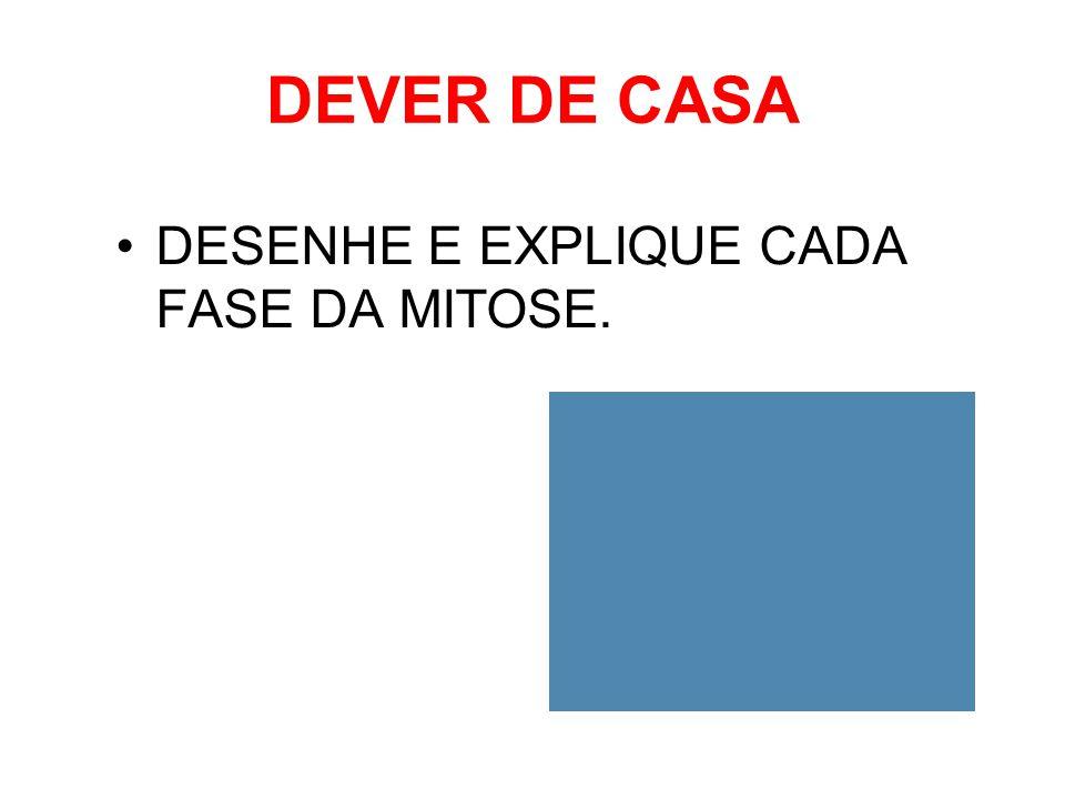 DEVER DE CASA DESENHE E EXPLIQUE CADA FASE DA MITOSE.