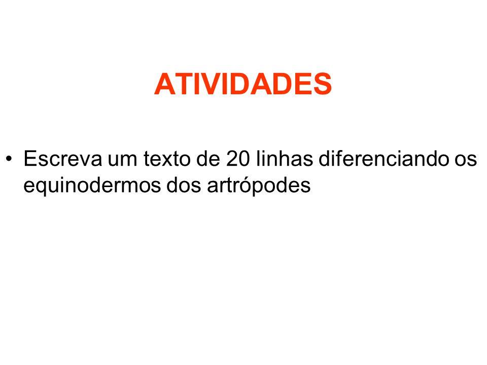 ATIVIDADES Escreva um texto de 20 linhas diferenciando os equinodermos dos artrópodes
