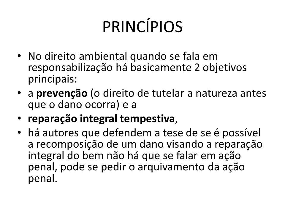 PRINCÍPIOS No direito ambiental quando se fala em responsabilização há basicamente 2 objetivos principais: