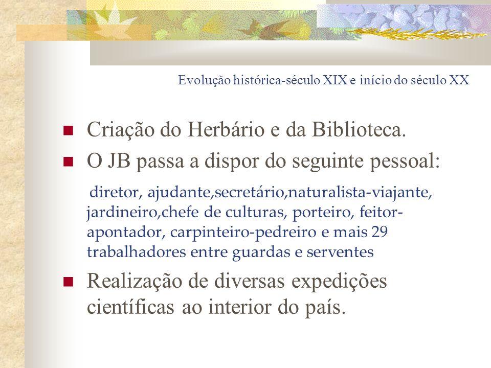 Evolução histórica-século XIX e início do século XX