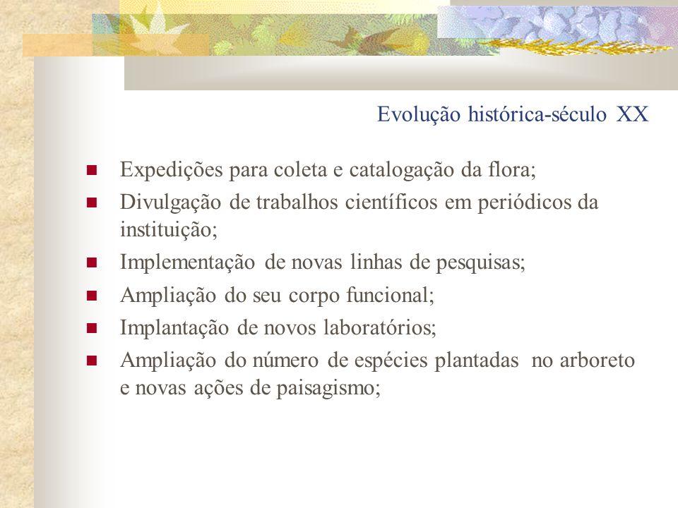 Evolução histórica-século XX