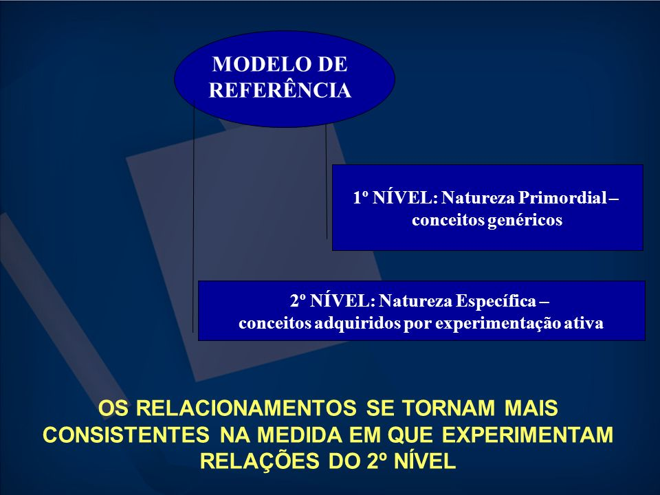 MODELO DE REFERÊNCIA 1º NÍVEL: Natureza Primordial – conceitos genéricos. 2º NÍVEL: Natureza Específica –