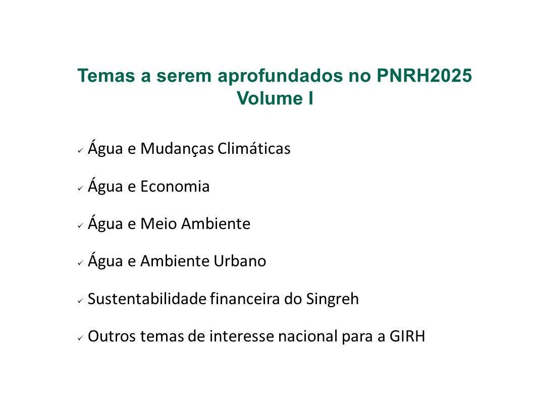 Temas a serem aprofundados no PNRH2025