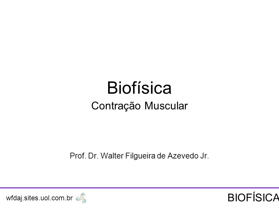 Contração Muscular Prof. Dr. Walter Filgueira de Azevedo Jr.
