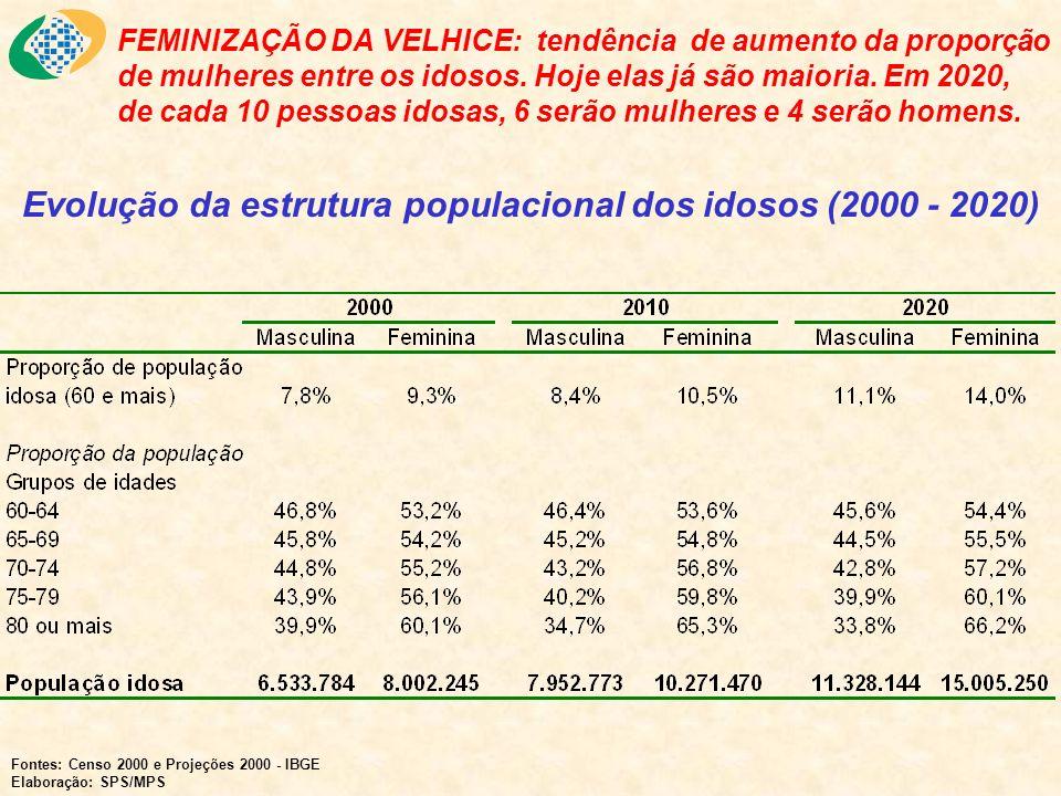 Evolução da estrutura populacional dos idosos (2000 - 2020)
