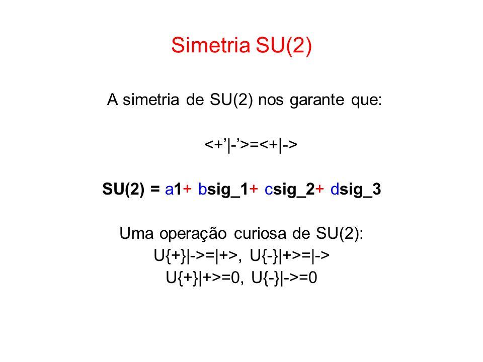 A simetria de SU(2) nos garante que: