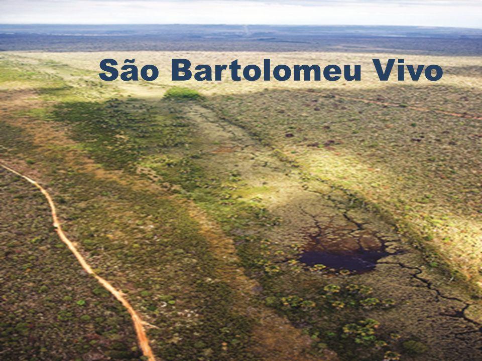São Bartolomeu Vivo