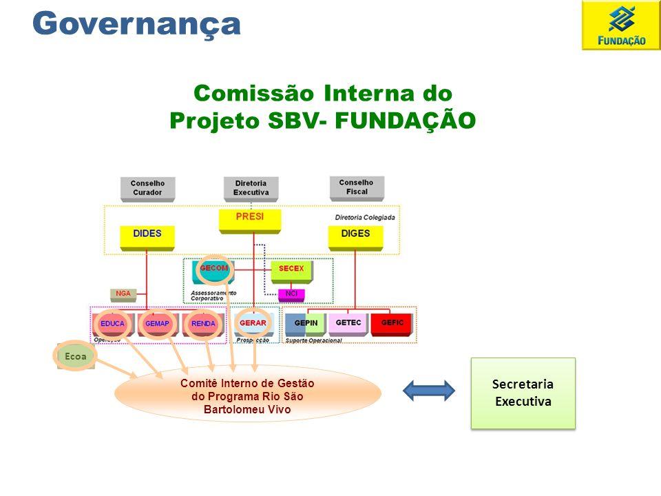 Comissão Interna do Projeto SBV- FUNDAÇÃO