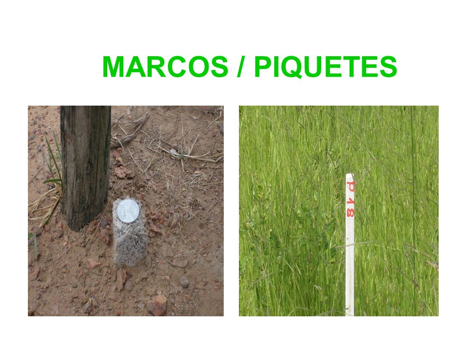 MARCOS / PIQUETES
