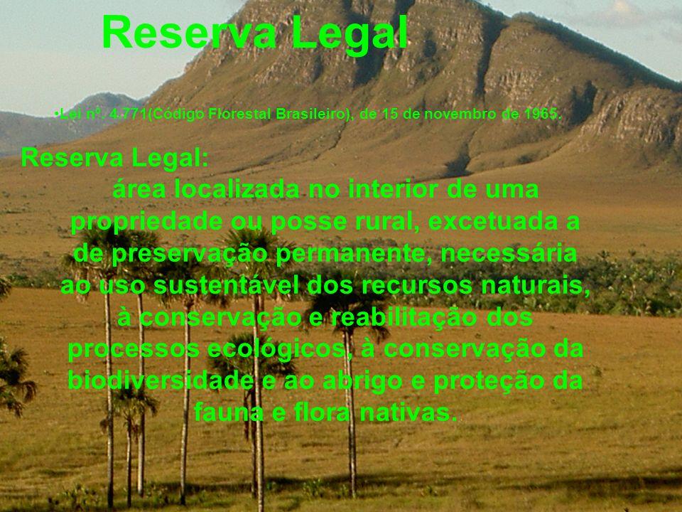 Lei nº. 4.771(Código Florestal Brasileiro), de 15 de novembro de 1965.