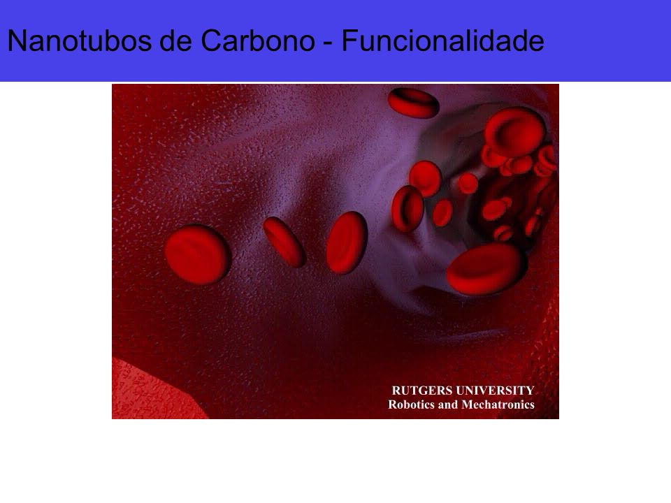 Nanotubos de Carbono - Funcionalidade