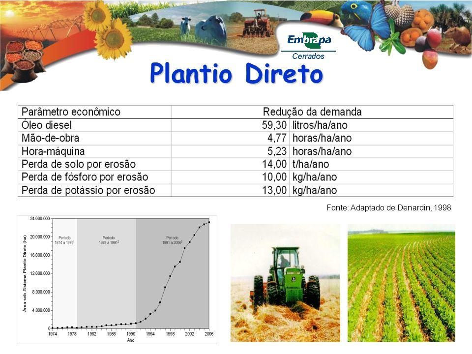 Plantio Direto Fonte: Adaptado de Denardin, 1998