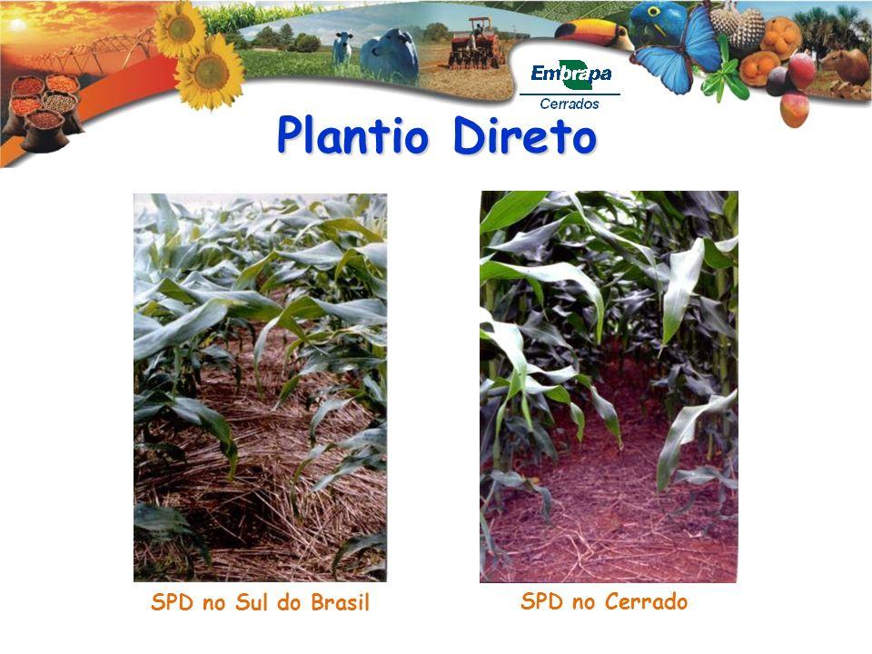 Plantio Direto SPD no Cerrado SPD no Sul do Brasil