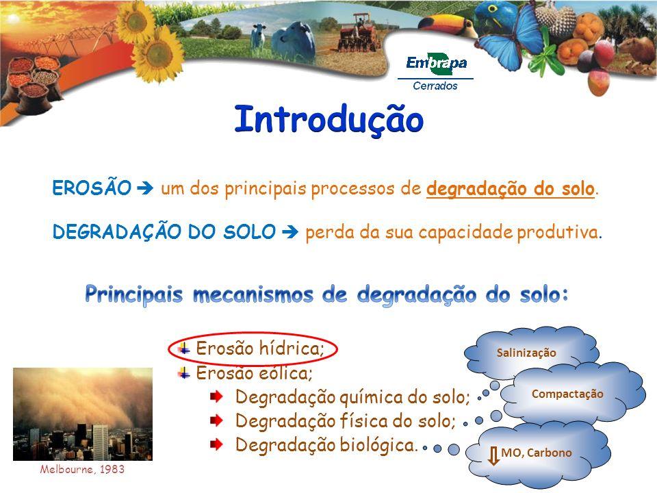 Introdução Principais mecanismos de degradação do solo: