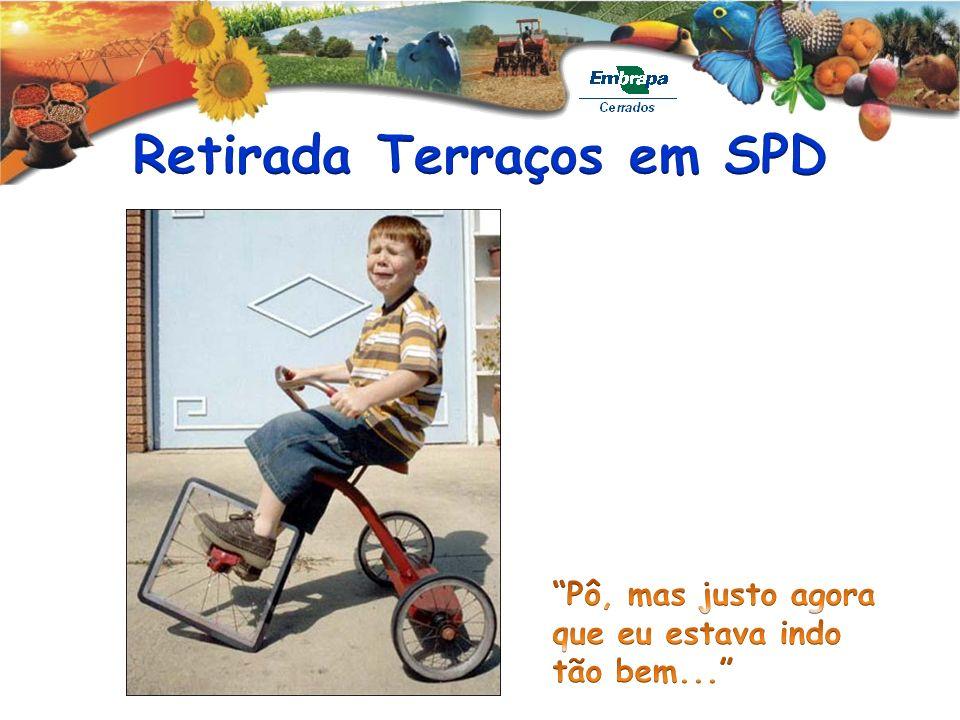 Retirada Terraços em SPD