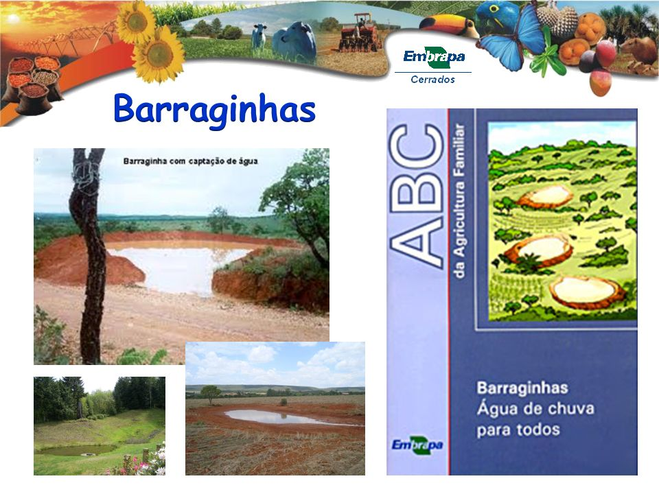 Barraginhas
