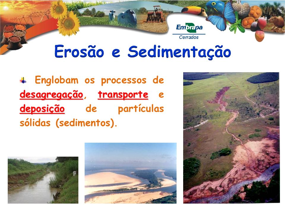 Erosão e Sedimentação Englobam os processos de desagregação, transporte e deposição de partículas sólidas (sedimentos).