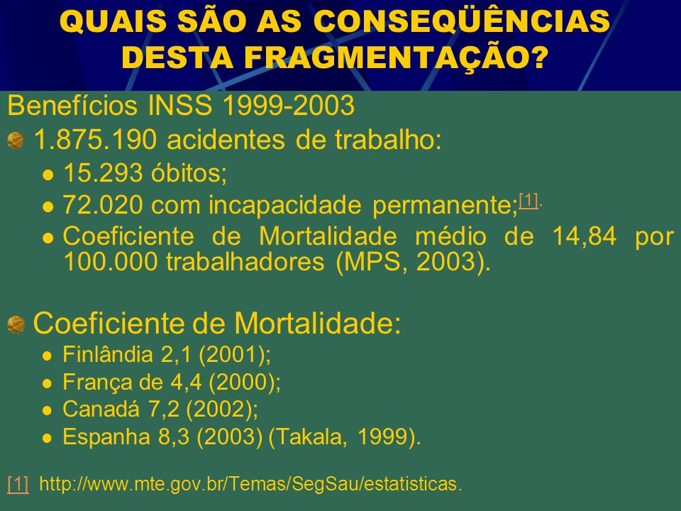 QUAIS SÃO AS CONSEQÜÊNCIAS DESTA FRAGMENTAÇÃO