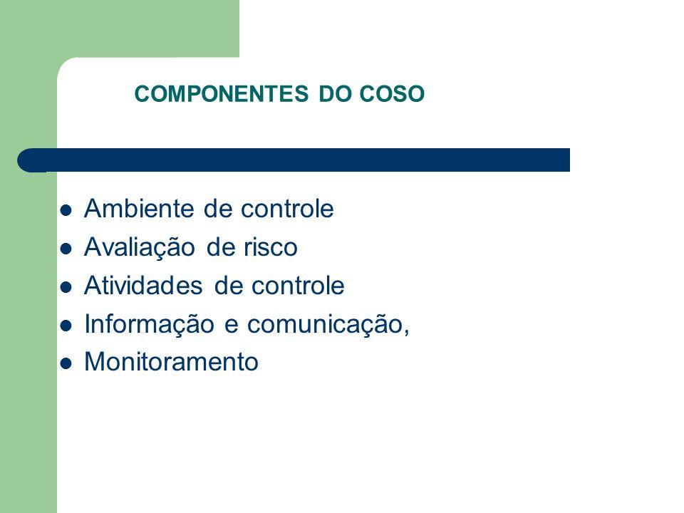 Atividades de controle Informação e comunicação, Monitoramento