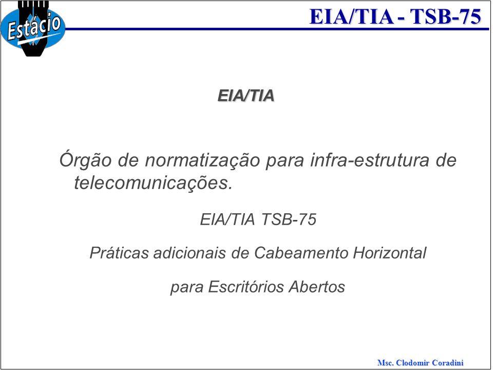 Órgão de normatização para infra-estrutura de telecomunicações.