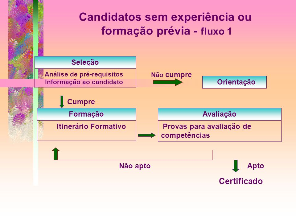 Candidatos sem experiência ou formação prévia - fluxo 1