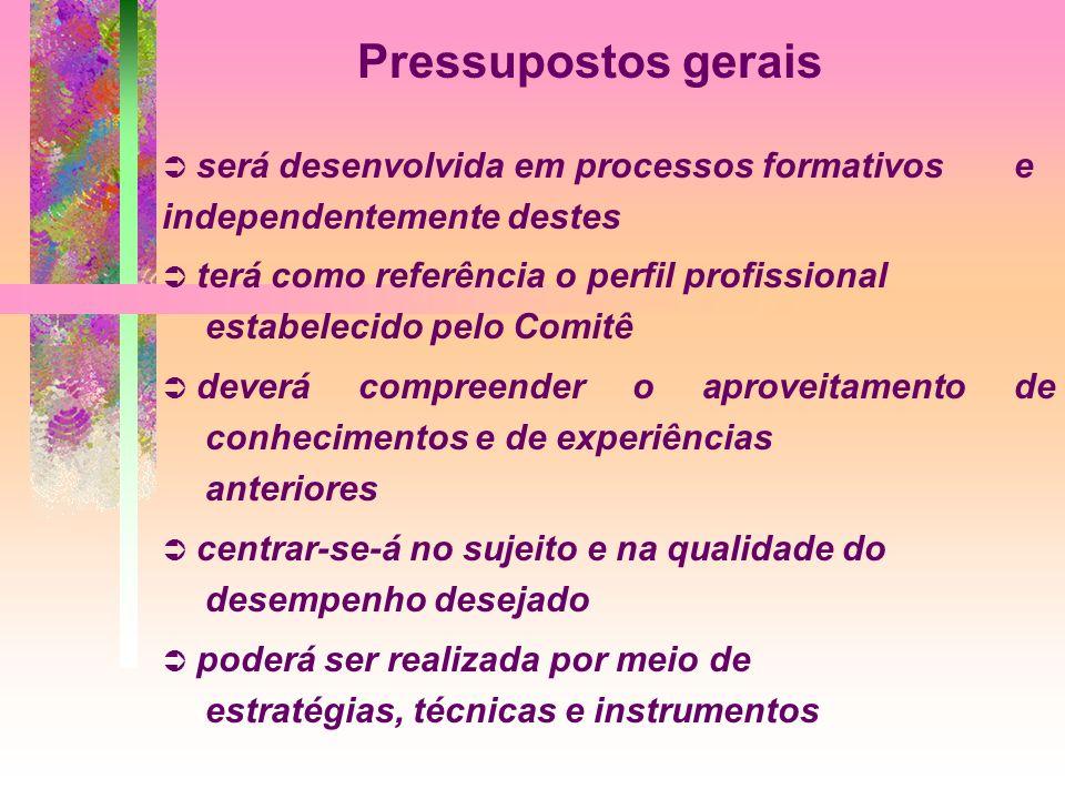 Pressupostos gerais será desenvolvida em processos formativos e independentemente destes.