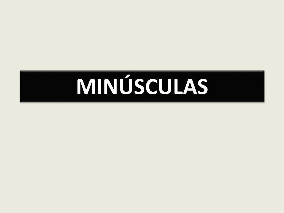 MINÚSCULAS