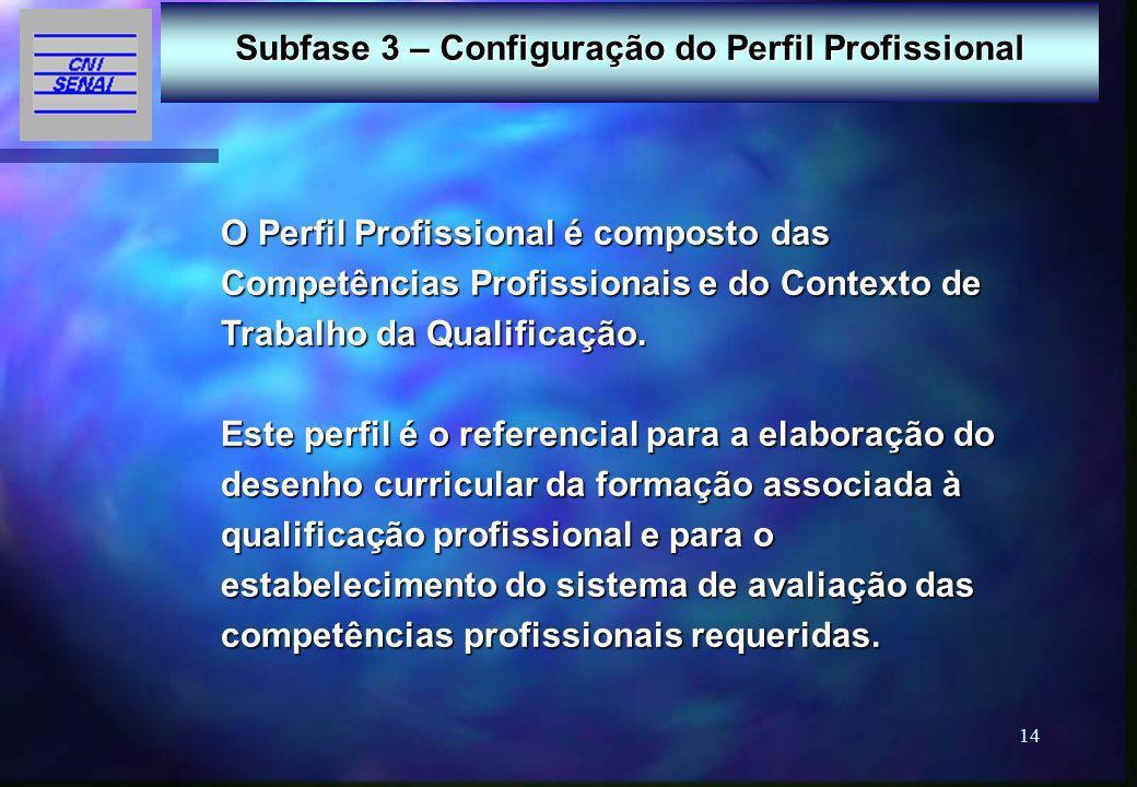 Subfase 3 – Configuração do Perfil Profissional