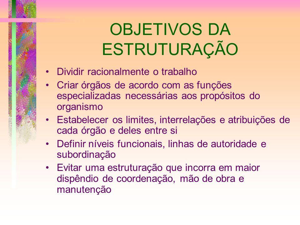 OBJETIVOS DA ESTRUTURAÇÃO