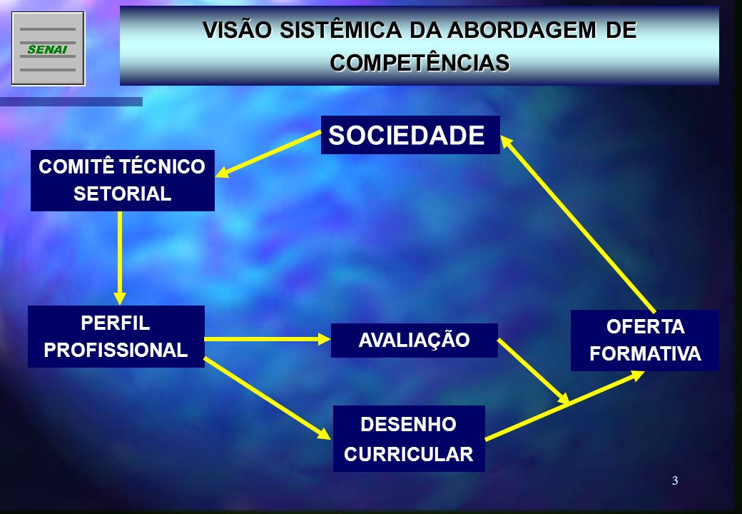 VISÃO SISTÊMICA DA ABORDAGEM DE COMPETÊNCIAS COMITÊ TÉCNICO SETORIAL