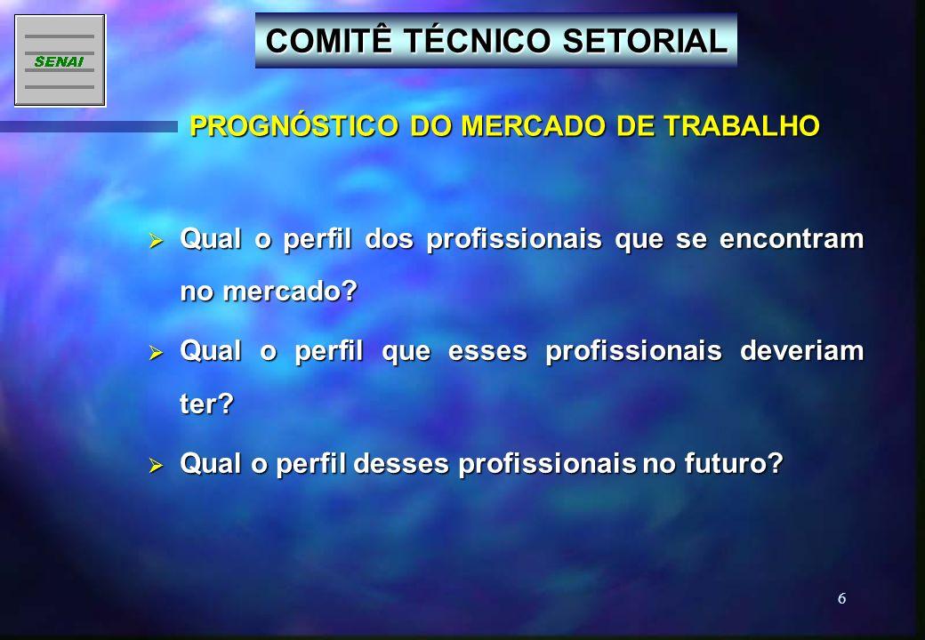 COMITÊ TÉCNICO SETORIAL PROGNÓSTICO DO MERCADO DE TRABALHO