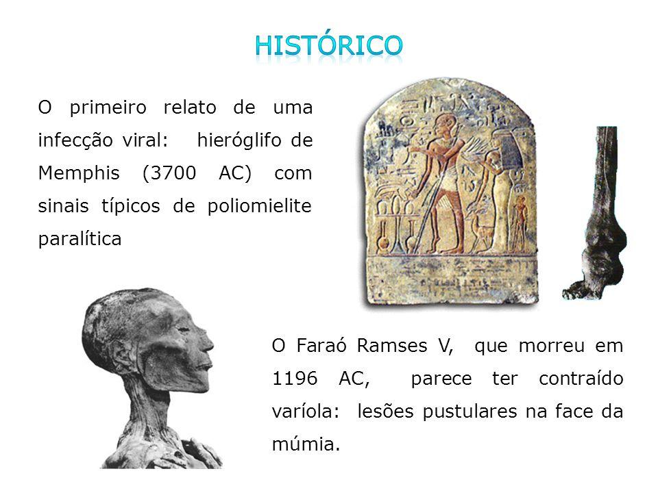 Histórico O primeiro relato de uma infecção viral: hieróglifo de Memphis (3700 AC) com sinais típicos de poliomielite paralítica.