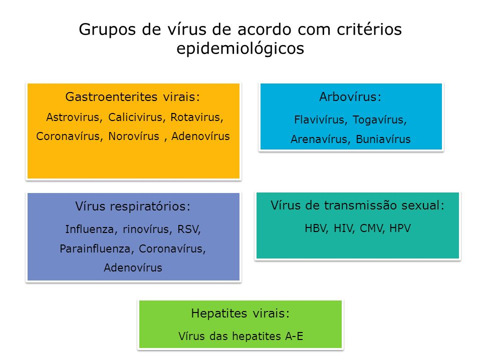 Grupos de vírus de acordo com critérios epidemiológicos