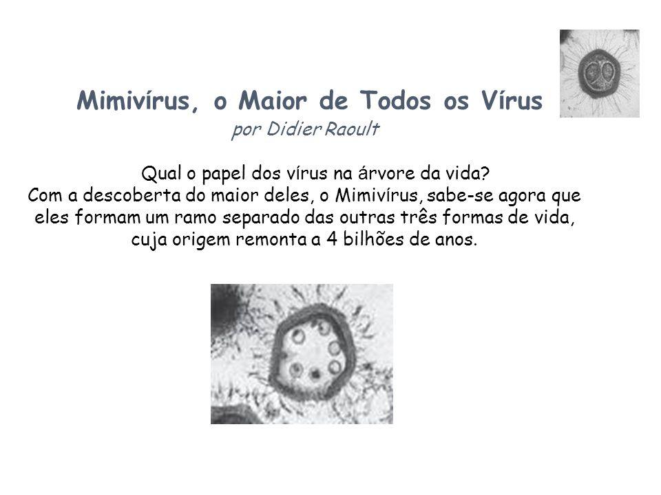 Mimivírus, o Maior de Todos os Vírus por Didier Raoult Qual o papel dos vírus na árvore da vida.