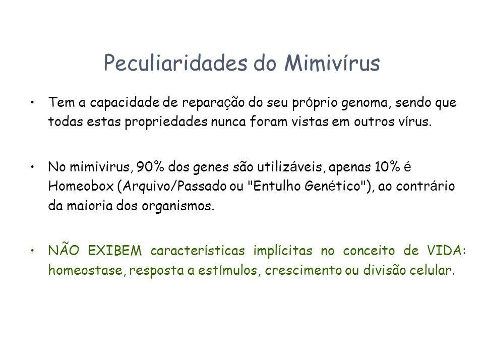 Peculiaridades do Mimivírus