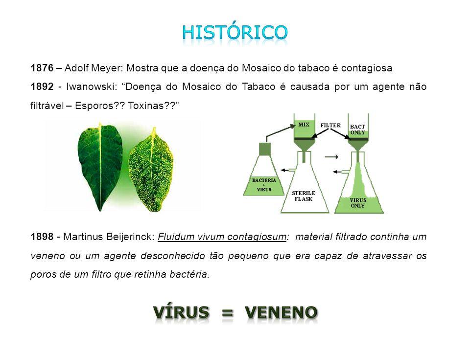 Histórico Vírus = Veneno