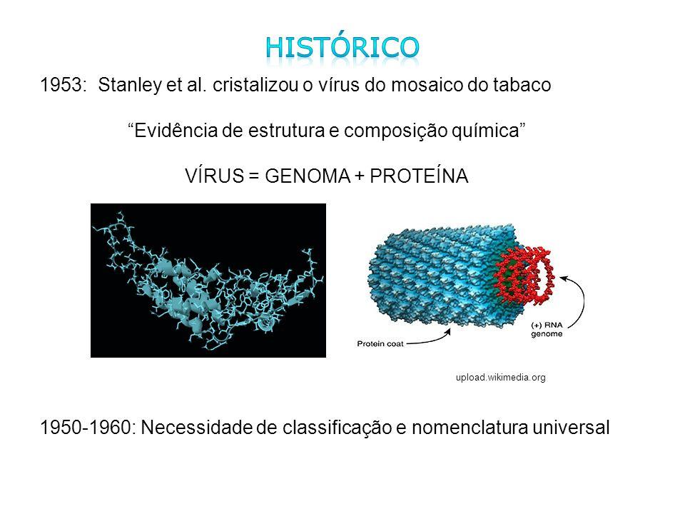 Histórico 1953: Stanley et al. cristalizou o vírus do mosaico do tabaco. Evidência de estrutura e composição química