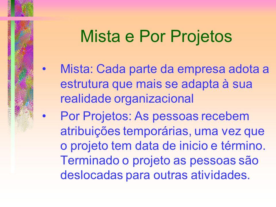 Mista e Por Projetos Mista: Cada parte da empresa adota a estrutura que mais se adapta à sua realidade organizacional.